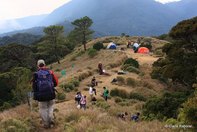 Mount Pulag Benguet Packages